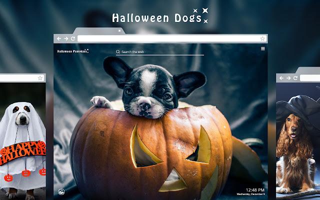 Halloween Dogs HD Wallpaper New Tab Theme