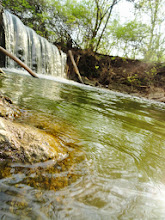 Photo: River and waterfall at Eastwood Park in Dayton, Ohio.
