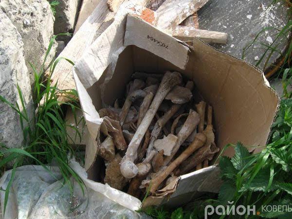 Ящик з кістками якими штукатурили школу в с.Вербка