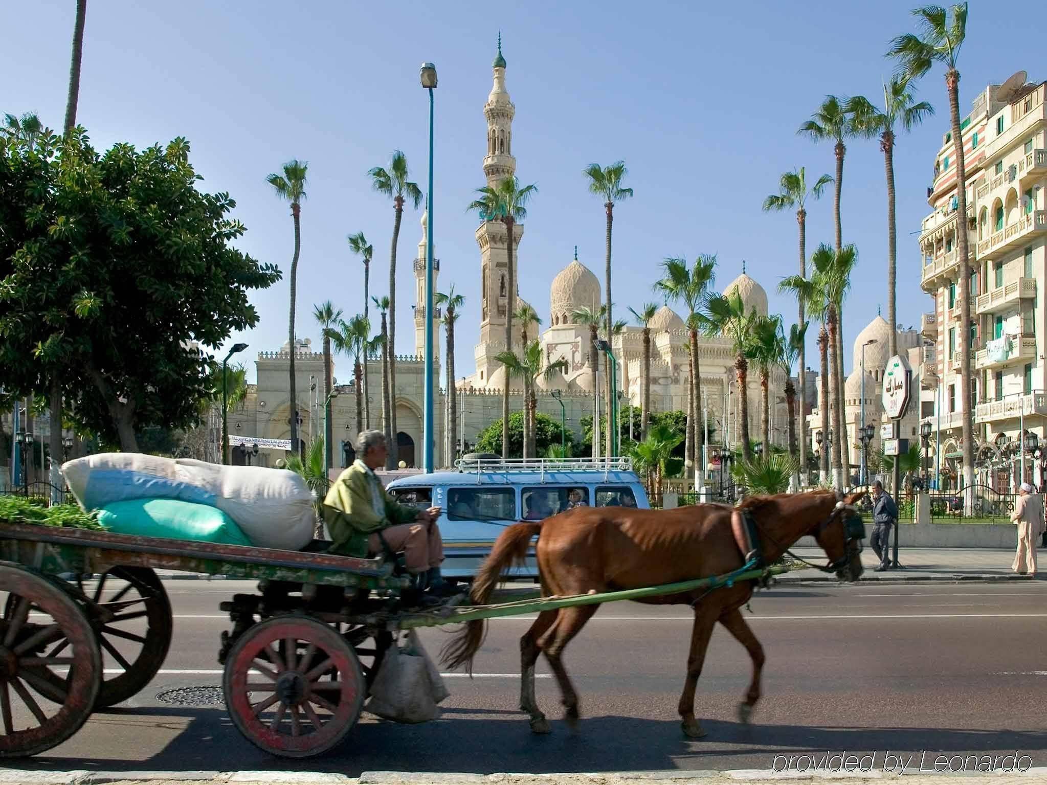 Romance Alexandria Corniche