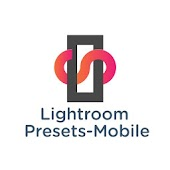 Presets for Lightroom Icon
