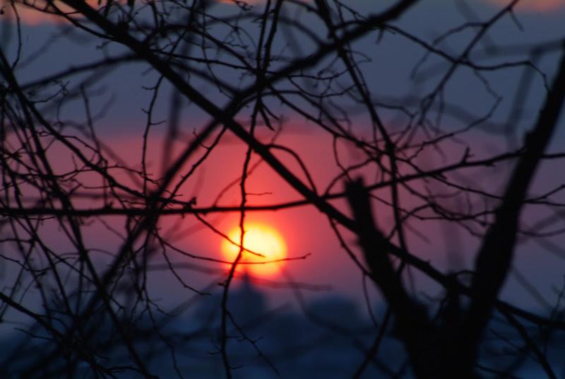 Sole intrecciato di Matateo