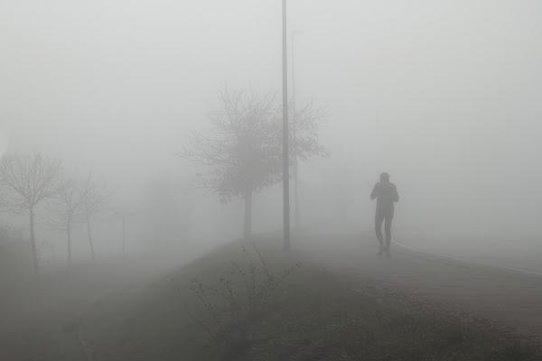nella nebbia di rino_savastano