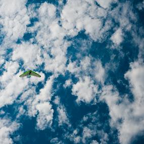 Sunday Glide by Mauricio Alas - News & Events World Events