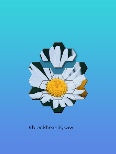 Block Hexa Jigsaw Puzzle screenshots 8