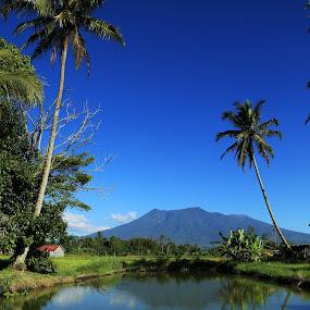 I Got the Blue by Adi Krishna - Landscapes Mountains & Hills