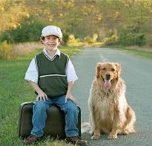 Boy and dog sitting on road