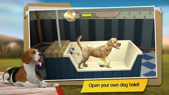 DogHotel – Play with dogs MOD Apk (Unlocked/Unlimited Coins) 1