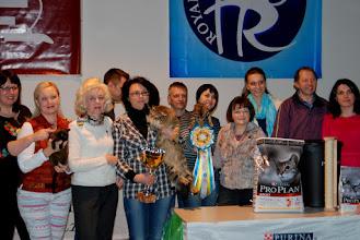 Photo: Победители выставки с владельцами и экспертами -)