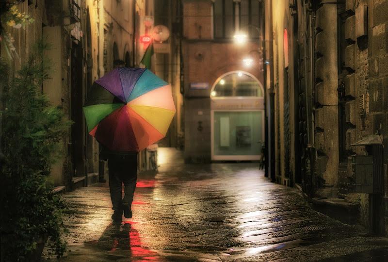 Sotto una leggera pioggia di Elena Salvai