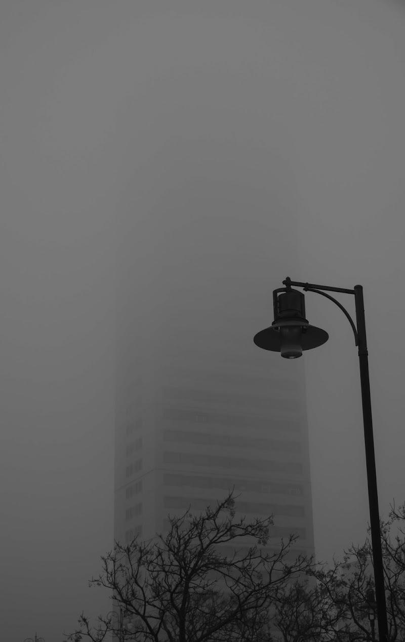 Il Grattacielo... di peraperina