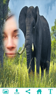 Amazing Wildlife Photo Frame- screenshot thumbnail
