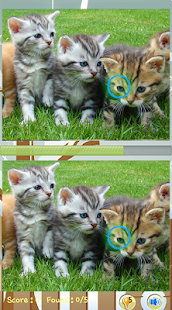 Find Difference Cat Games - náhled