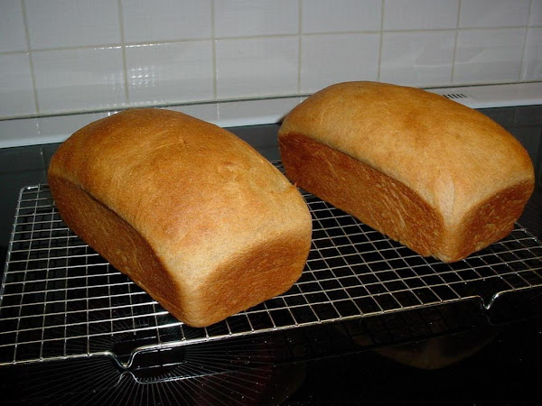Fifty-fifty Whole Wheat Bread Using Bread Machine Recipe