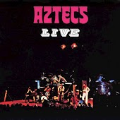 Most People I Know Think That I'm Crazy (Live) (Bonus Track - The Havoc Singles)