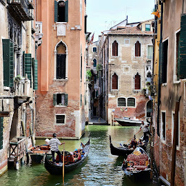 Venice by Francis Xavier Camilleri - City,  Street & Park  Historic Districts