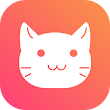 HOLLE -live video call icon