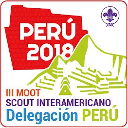 Delegación Perú al III Moot Scout Interamericano - Perú 2018
