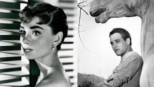 Dos de los retratos expuestos en el marco de la exposición del CAF. En este caso, Audrey Hepburn y Paul Newman.