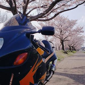 その他  GSX1300R隼 04年式のカスタム事例画像 YellowDropさんの2020年04月03日21:43の投稿