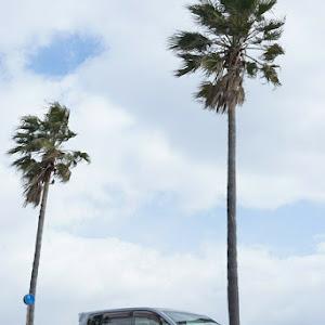 デリカD:5 CV5W 【 2007ねん  Gぷれ 】のカスタム事例画像  【 haba : DELIる 】さんの2020年02月25日16:59の投稿