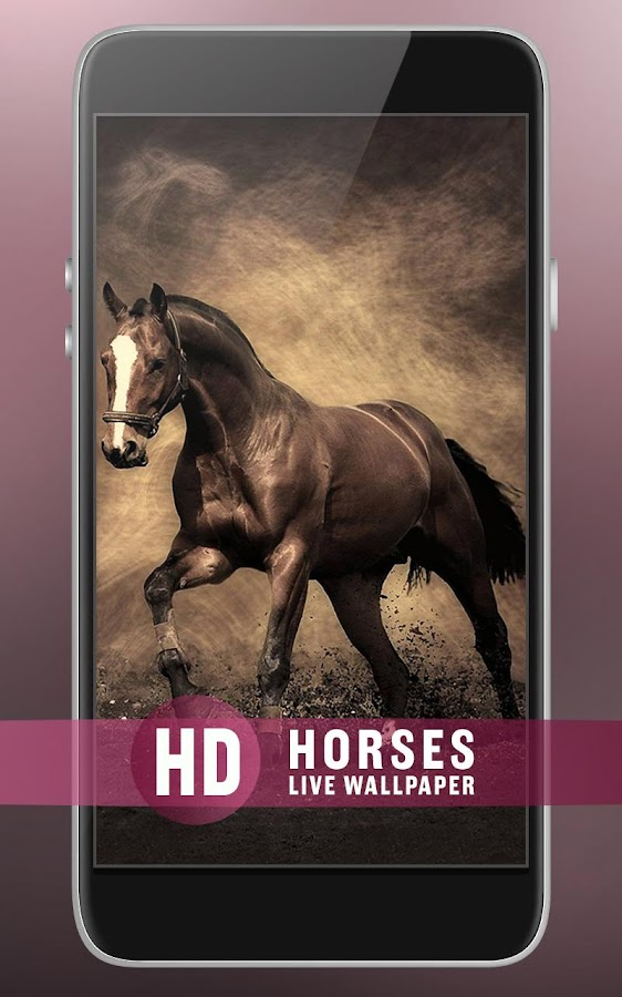 horses live wallpaper android apps on google play