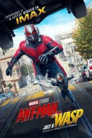 KARINCA ADAM VE EŞEK ARISI – AntMan And The WASP