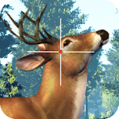 Deer hunt Exotic Season 2017