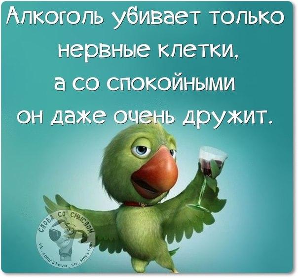 Позитивные фразочки со смыслом жизнь, картинки, смысл, фраза, цитаты, юмор
