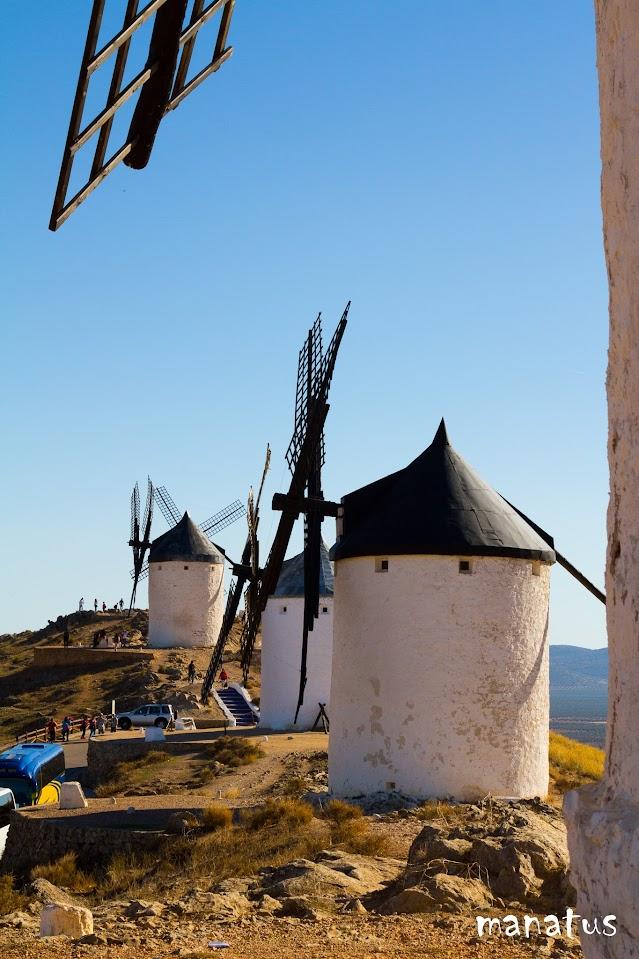 manatus molinos de viento