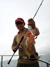 Photo: 高級魚のキジハタゲット!