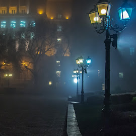 by Estislav Ploshtakov - City,  Street & Park  Night