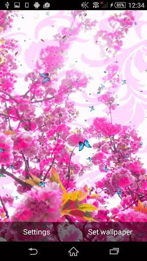 春天動態壁紙