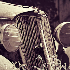 rusted and abandoned by Randall Langenhoven - Transportation Automobiles ( lights, car, old, vintage, grille, rusty, classic, abandoned )