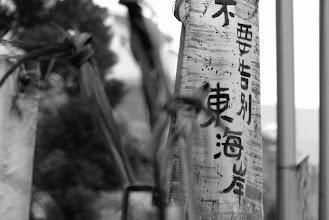 Photo: 竹筏與芒草 << #二次堆積 20130420 http://asioliu.blogspot.com/2013/04/amis-bamboo-raft_20.html?spref=tw  #東海岸 #杉原 # 拆 #美麗灣 #太平洋 #部落 #台東