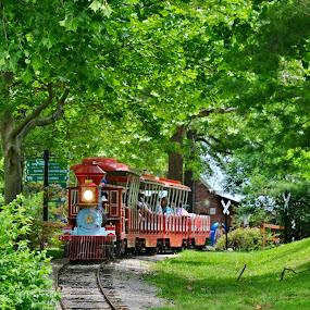 by Tammy Little Elam - Transportation Railway Tracks (  )