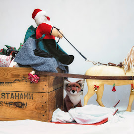 Santa Claus from Sweden by Mats Andersson - Public Holidays Christmas ( sweden, christmas time, winter, christmas presents, jinglebells, horse, sleigh, santa claus, christmas )