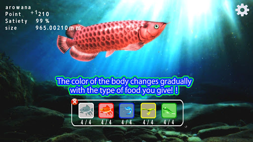 Arowana raising from fry 1.1.3 screenshots 2