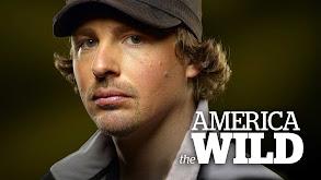 America the Wild thumbnail