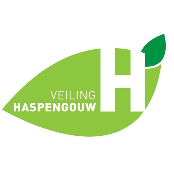 veiling_haspengouw.jpg