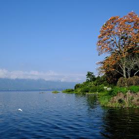 Toba Lake by Fahmi Setyawan - Landscapes Travel ( indonesia, toba )