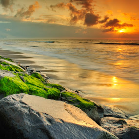 the Grass of Angry ( Padang Galak) by KooKoo BreSyanatha - Landscapes Sunsets & Sunrises