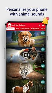 Animals: Ringtones 6