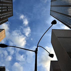 Looking up by Valeria Carteri - City,  Street & Park  Vistas ( skyscrapers, manhattan, streetlights, new york )