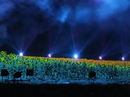 祭りの夜〜花火の下の花