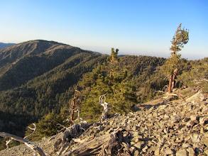 Photo: View northwest toward Blue Ridge on North Backbone Trail