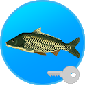 True Fishing (key). Fishing simulator icon