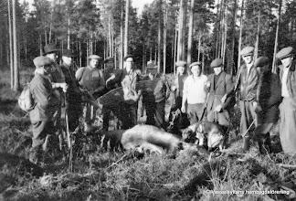 Photo: Jakt i Vasselhyttan 1951