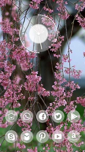 唯美粉色花朵主题