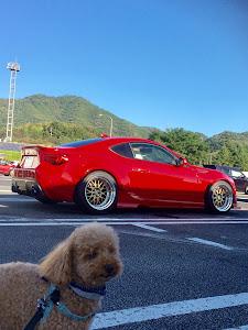 86 ZN6 GT-Limitedのカスタム事例画像 プーおやじ 【JP Wide Tunes】さんの2018年10月08日08:06の投稿